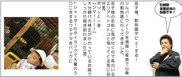カワキタニュース10月 その3