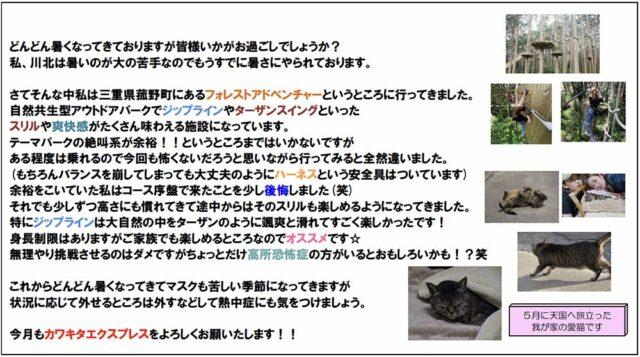 カワキタニュース7月 その4